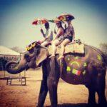 Top Elephant Safari in India